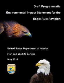 Draft Programmatic Environmental Impact Statement for the Eagle Rules Revision